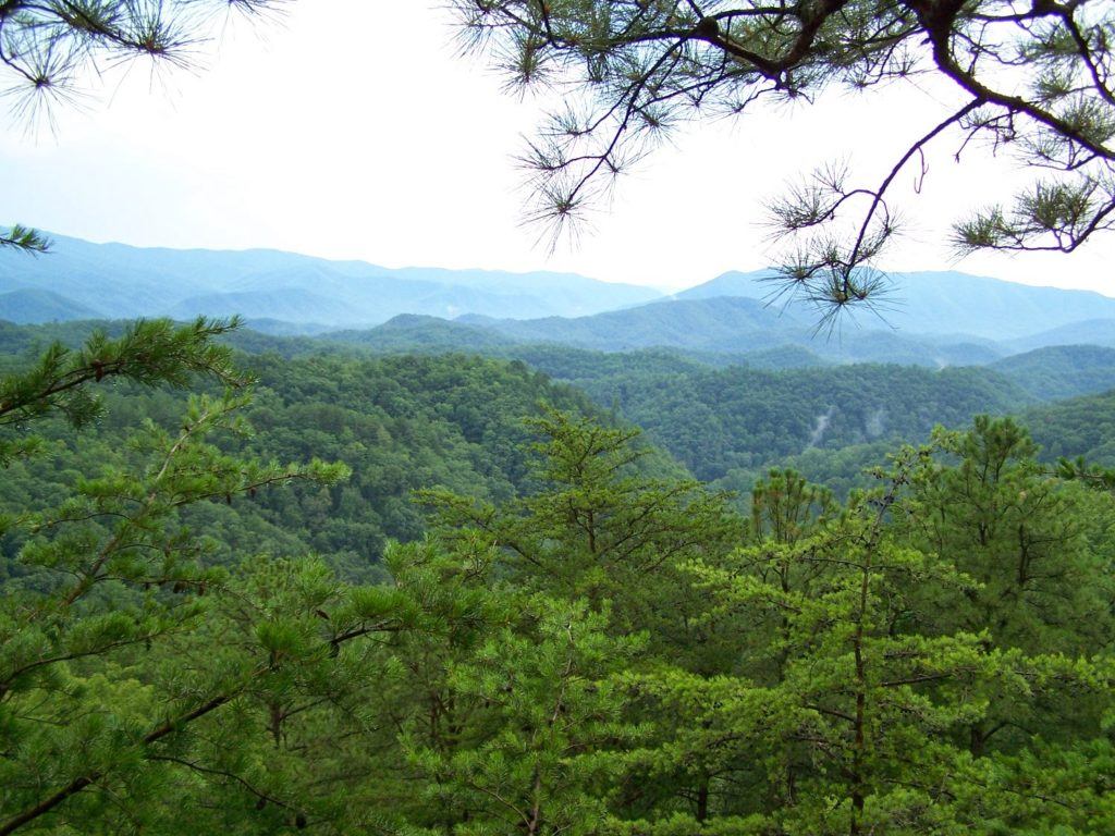 Smoky Mountain views from horseback or zipline