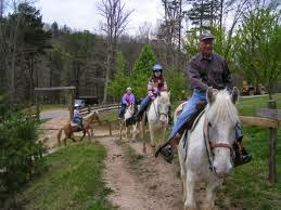Unguided horse rides in the Smokies