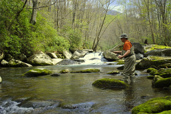 fly fishing smoky mountains